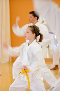 Shotokan Karate Minneapolis Mixed Level Class