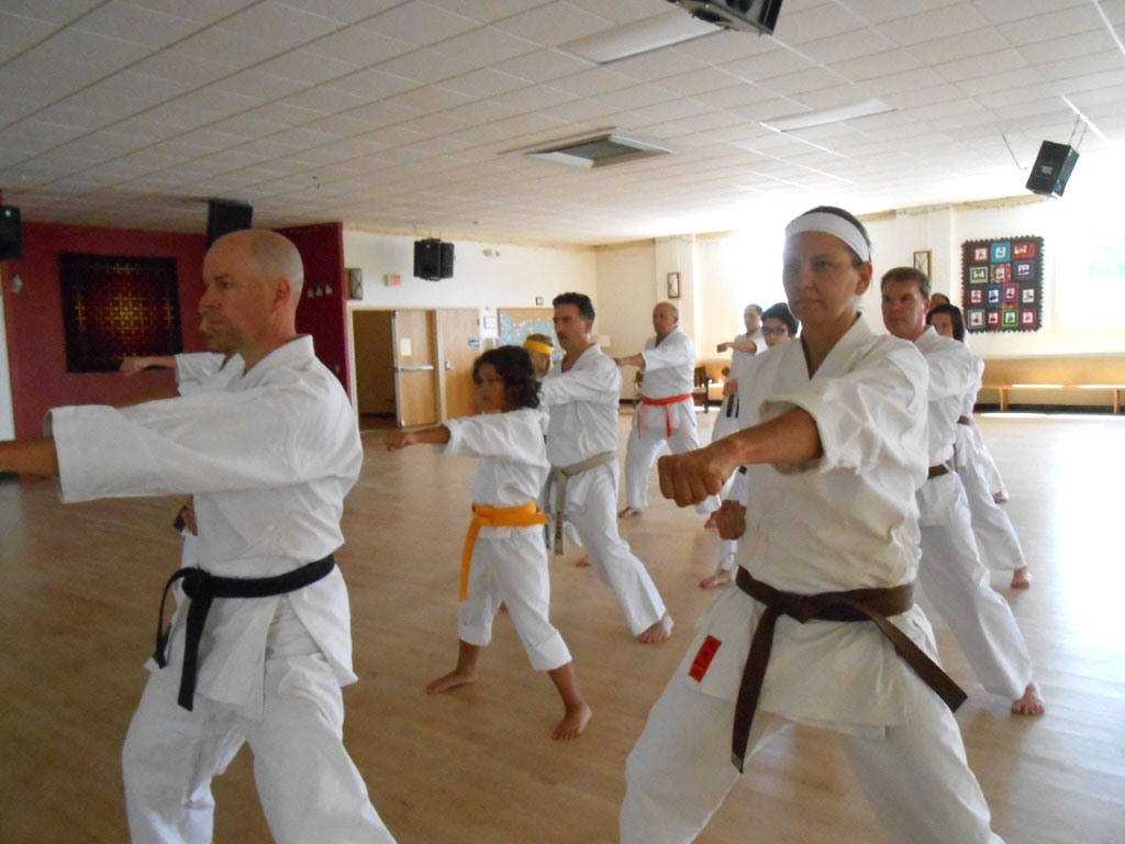 Shotokan Karate Dojo Minneapolis