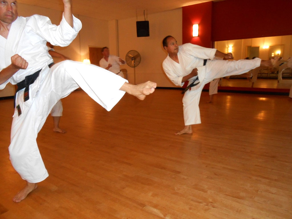 Shotokan Karate Dojo Minneapolis Kick