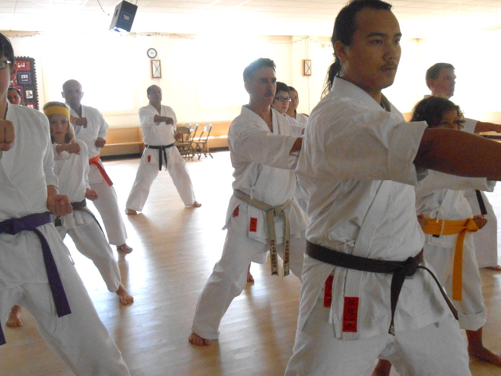 Shotokan Karate Dojo Minneapolis Punch